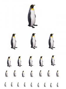 Tučňáci kopie